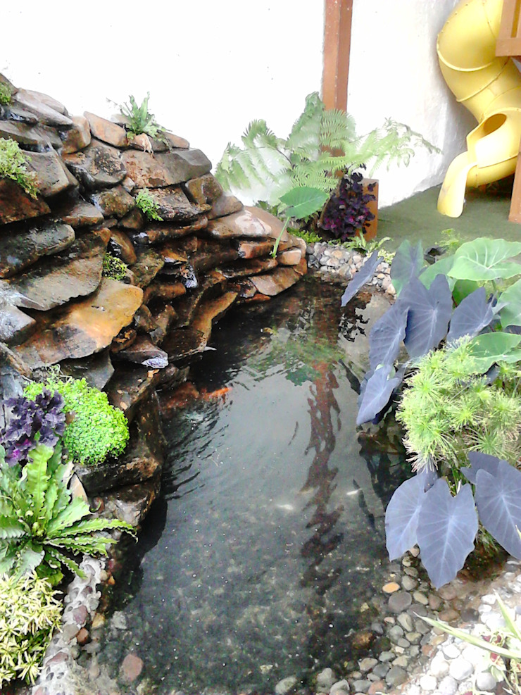 Tropical style garden by Ambient Natura Tropical Stone