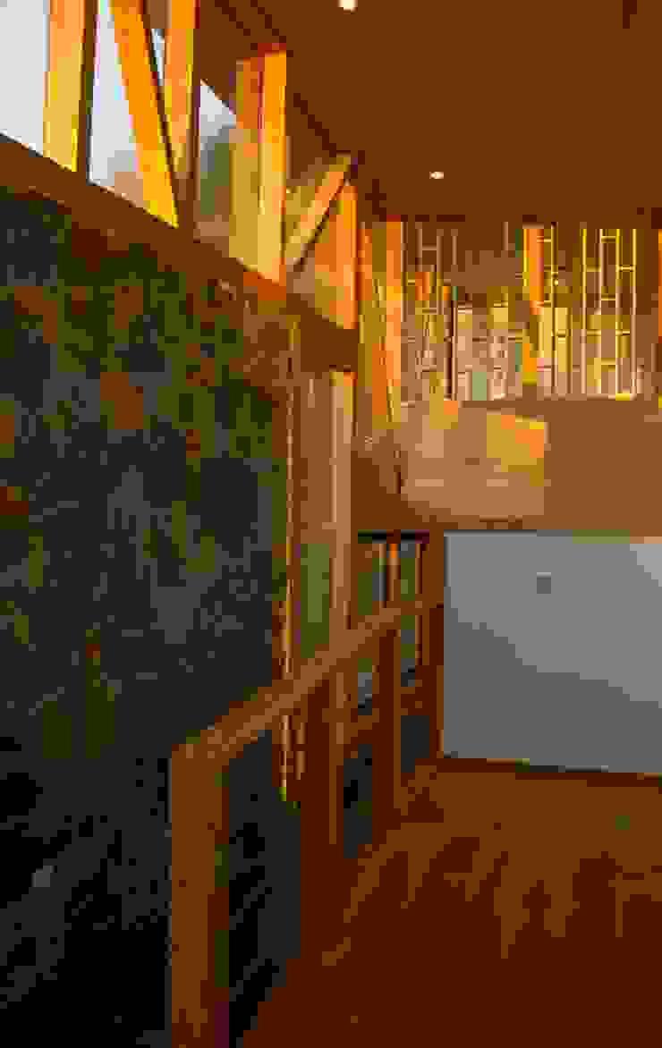 Hall de distribucion Pasillos, vestíbulos y escaleras modernos de PhilippeGameArquitectos Moderno Piedra