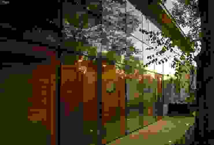Vista desde el bosque al atardecer Puertas y ventanas modernas de PhilippeGameArquitectos Moderno Vidrio