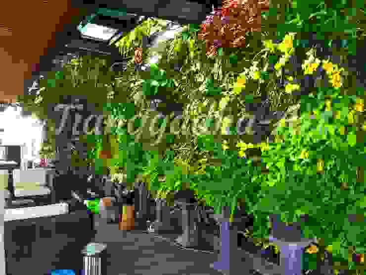 Hasil pembuatan taman vertikal Oleh Tukang Taman Surabaya - Tianggadha-art Modern Aluminium/Seng