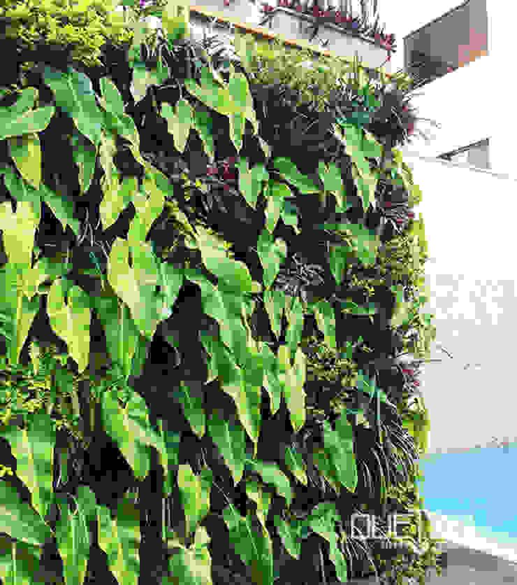 Jardín vertical residencial de Quetzal Jardines Moderno