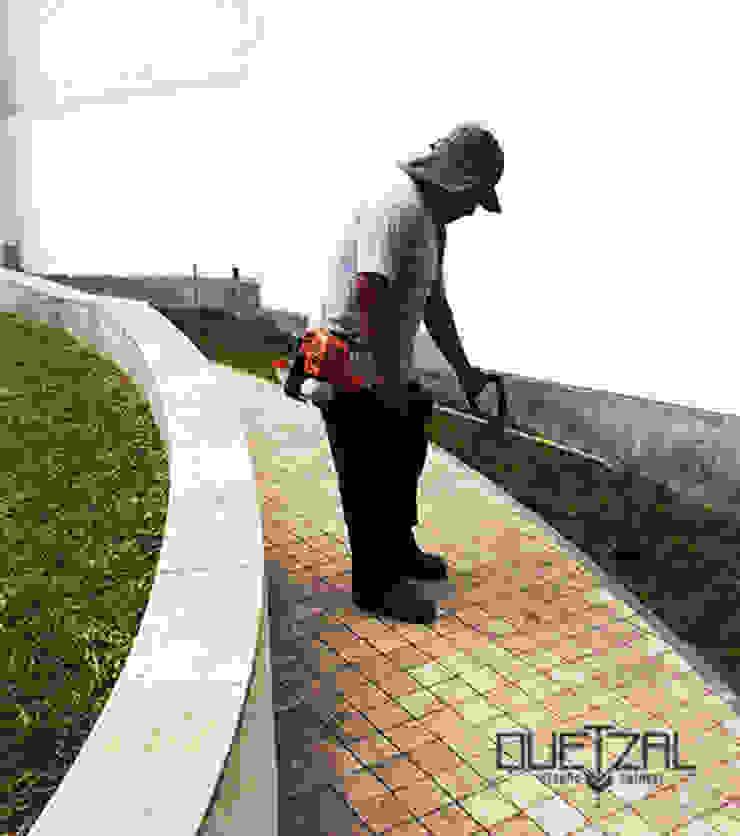 Mantenimiento e instalación de áreas verdes de Quetzal Jardines Clásico