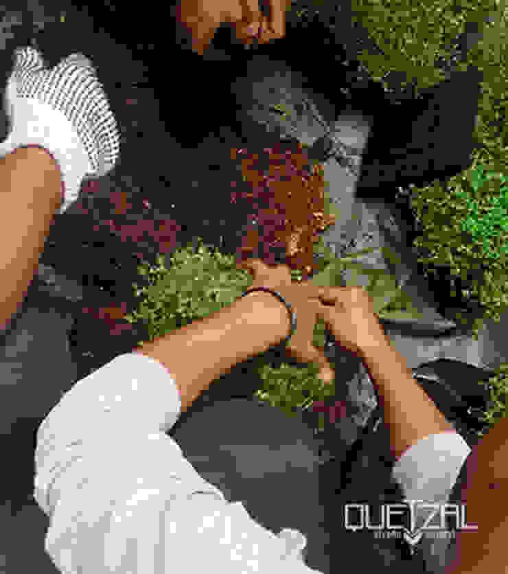 Mantenimiento e instalación de áreas verdes de Quetzal Jardines Moderno