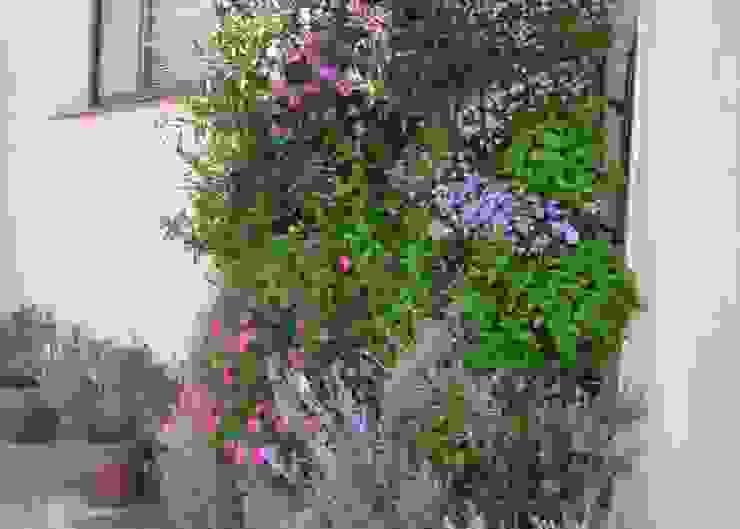 Decora con jardines verticales en Barcelona y Madrid por Buresinnova: Jardines de estilo  de BURESINNOVA S.A., Mediterráneo