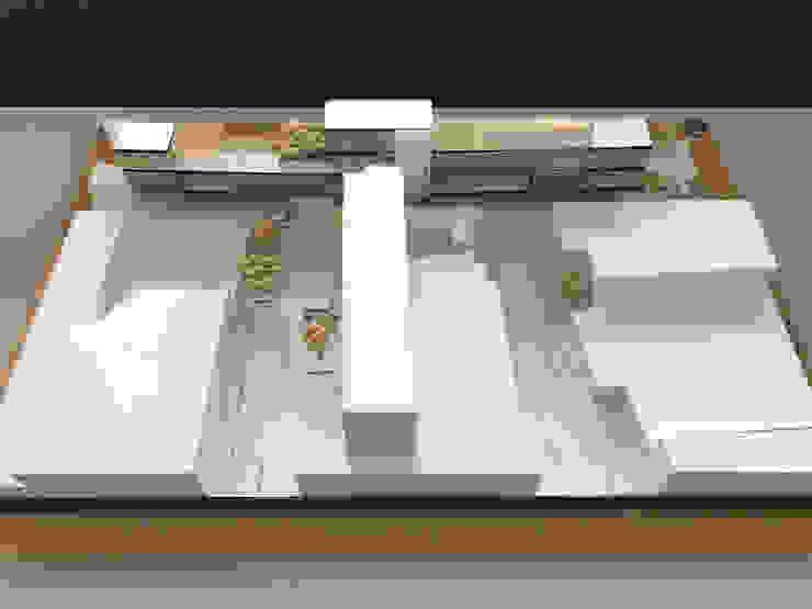 MC Tower Estudios y despachos modernos de M+Z Arquitectos Moderno