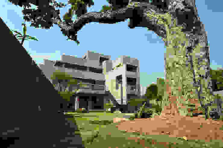 老樹新屋 Minimalist house by 黃耀德建築師事務所 Adermark Design Studio Minimalist