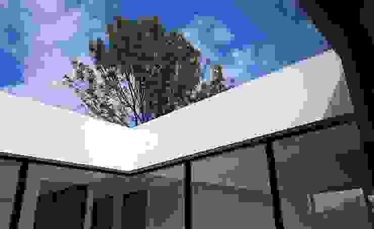 Minimalist windows & doors by David Macias Arquitectura & Urbanismo Minimalist