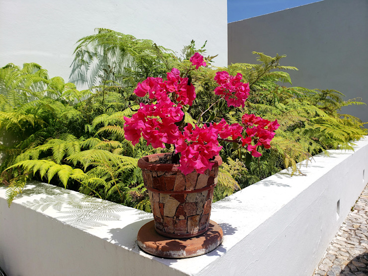 casa co-ti: Casas unifamiliares de estilo  por Daniel Cota Arquitectura | Despacho de arquitectos | Cancún