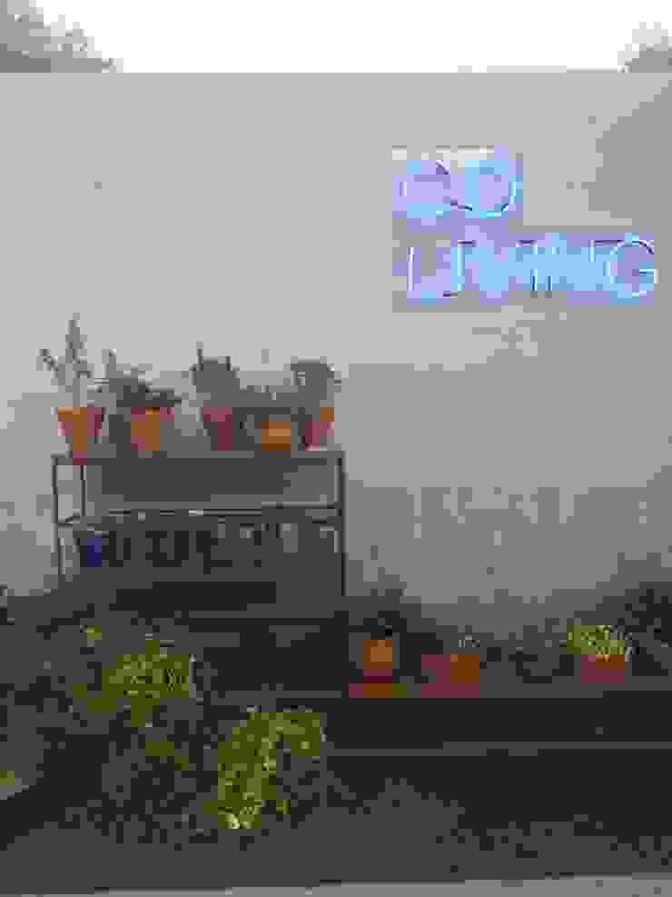 Tropical style garden by Luísa Nascimento - Homify Tropical