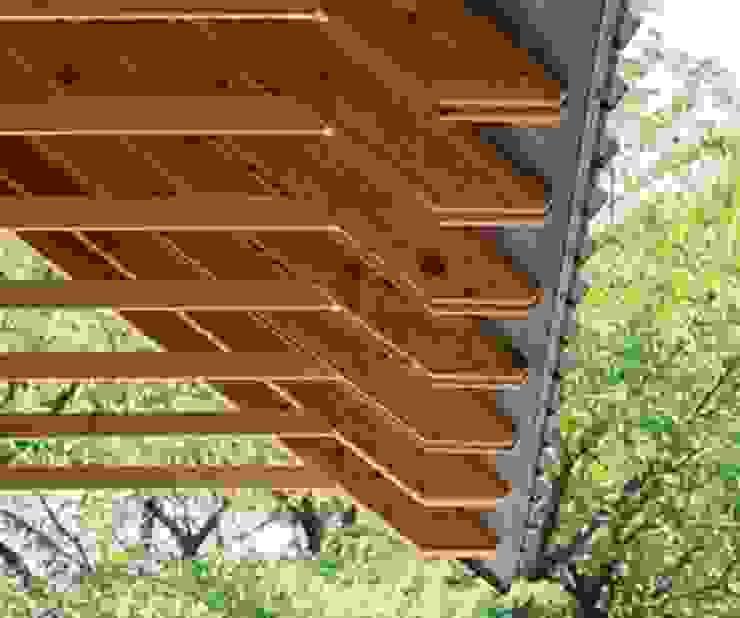 ceilings de Premium commercial remodeling Moderno Madera Acabado en madera