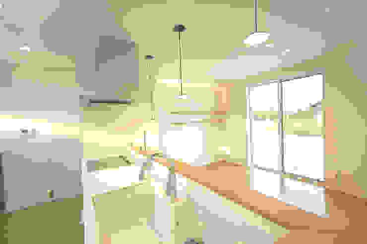 河川敷沿いに建つ平屋の二世帯住宅: KAWAZOE-ARCHITECTSが手掛けたです。