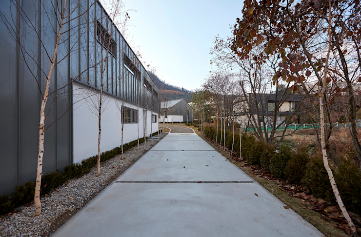 lyanature LAB (리아네이처 연구소 및 창고동) 모던스타일 정원 by 위즈스케일디자인 모던
