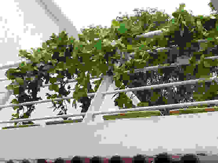 Jardinería : Jardines de estilo  por INTERIORISIMO ,
