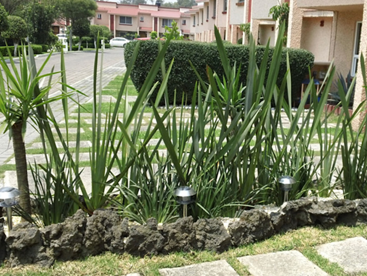 Jardinería : Jardines de estilo por INTERIORISIMO , Moderno