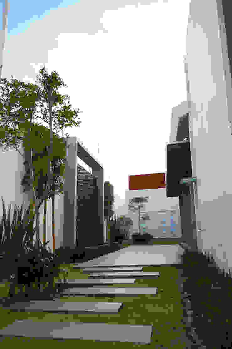 muro lloron Jardines de estilo moderno de arketipo-taller de arquitectura Moderno