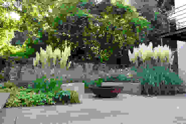 Leise rauschende Pampasgräser umhüllen den Grillplatz mit Feuerschale Moderner Garten von Terramanus Landschaftsarchitektur Modern