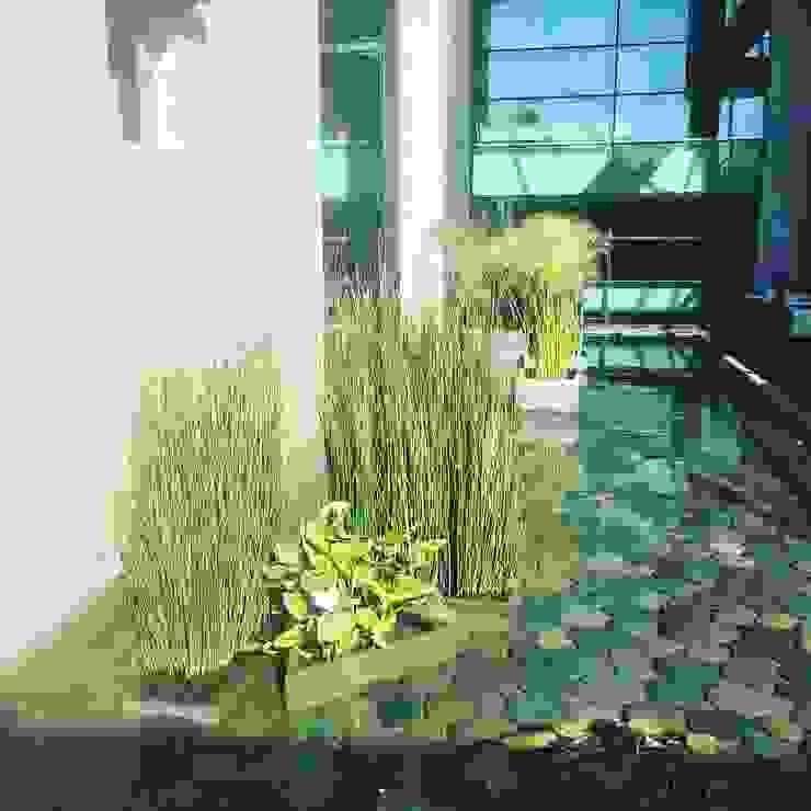 Cliniche in stile  di Agroinnovacion paisajismo sustentable, Moderno