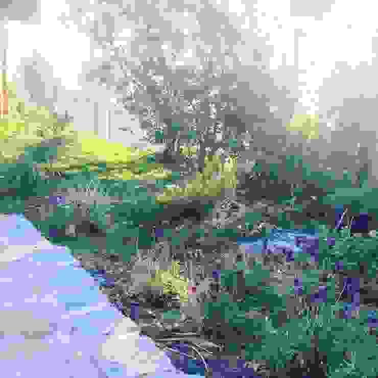 Rustic style gardens by Agroinnovacion paisajismo sustentable Rustic