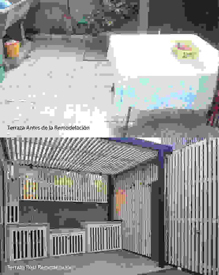 Antes/Después Terraza de LEON CAMPINO ARQUITECTURA SPA Moderno