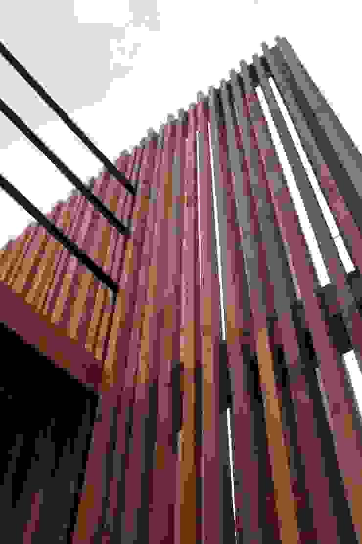 一級建築士事務所A-SA工房 Modern walls & floors Wood Wood effect