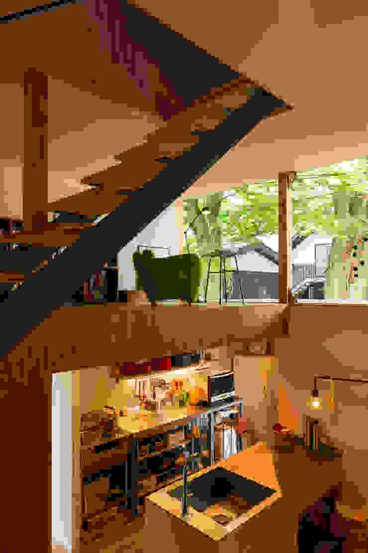 Takeru Shoji Architects.Co.,Ltd Floors