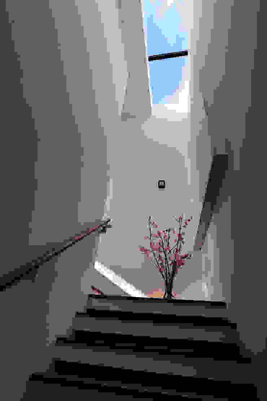 光梯之端 根據 黃耀德建築師事務所 Adermark Design Studio 簡約風