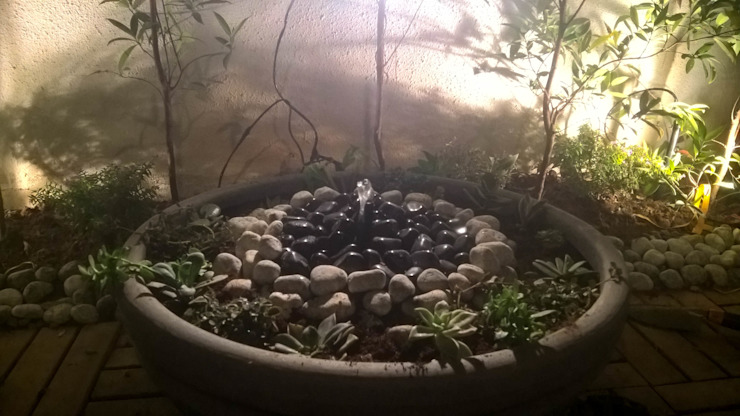 Tropischer Garten von homify Tropisch