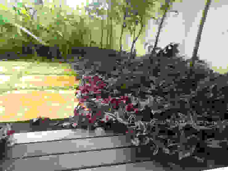 Backyard Garden Project - Harlur Cherry Garden and Landscapers Tropical style garden