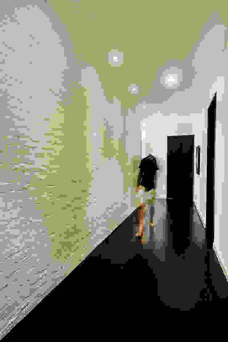 Studio BEVD Couloir, entrée, escaliers asiatiques