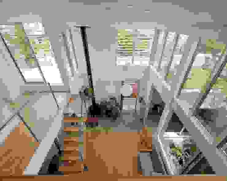 南町の家 モダンスタイルの 玄関&廊下&階段 の arc-d モダン