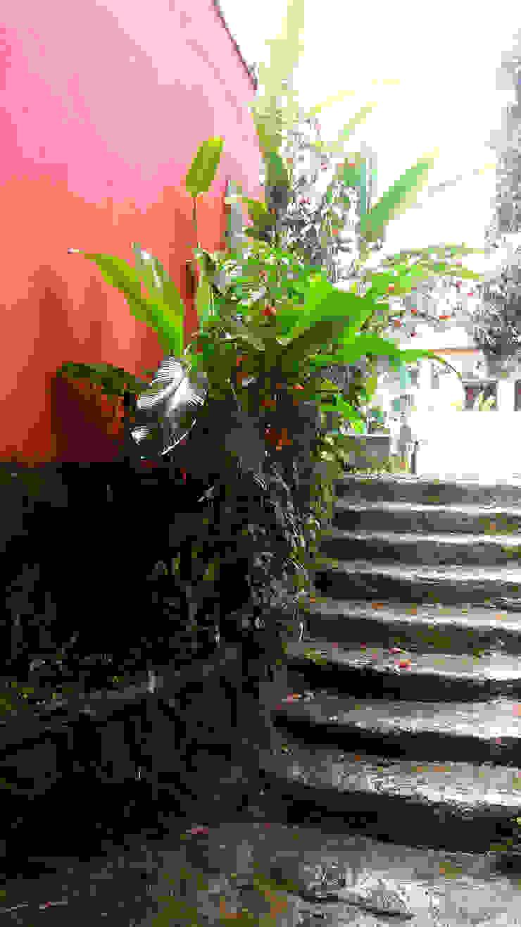 by Oria Arquitetura & Construções Tropical Stone