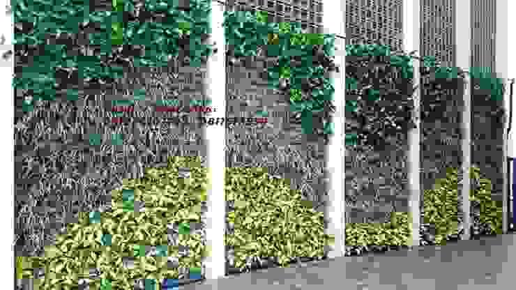 JASA TUKANG TAMAN VERTIKAL SURABAYA - Vertical garden part II Oleh TUKANG TAMAN SURABAYA - jasataman.co.id Tropis