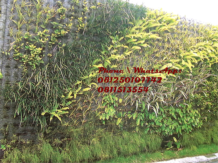 Taman Vertikal - vertical garden untuk rumah Oleh TUKANG TAMAN SURABAYA - jasataman.co.id Tropis