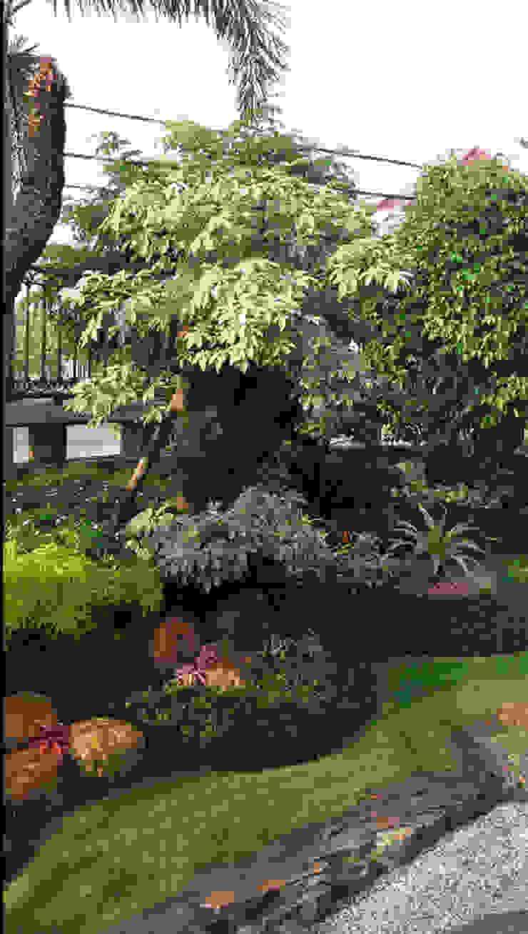 taman halaman depan rumah:country  oleh TUKANG TAMAN SURABAYA - jasataman.co.id, Country