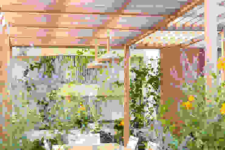 marta carraro Balcones y terrazas de estilo moderno