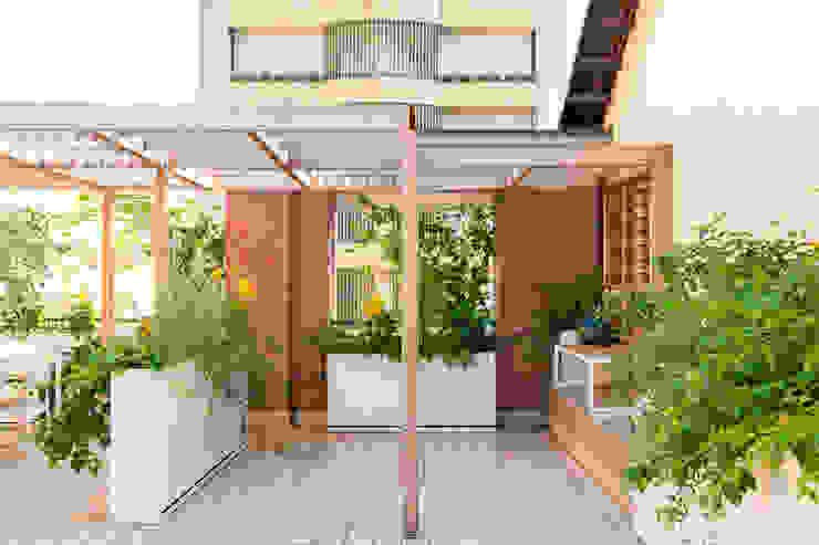 marta carraro Balcones y terrazas de estilo minimalista