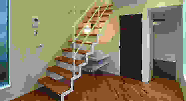 1階のスキップフロア 滝沢設計合同会社 モダンスタイルの 玄関&廊下&階段