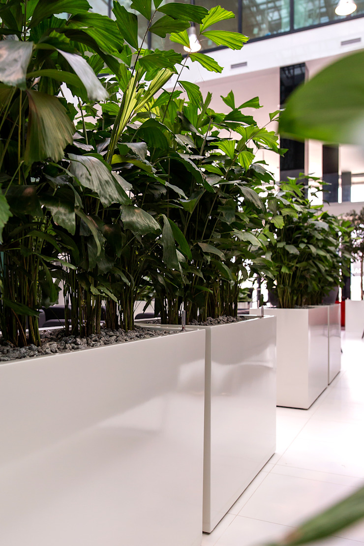 CERMAX Office spaces & stores