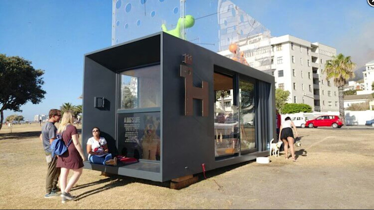 Container - Mobile Dog Adoption Centre in Cape Town by Container Rental and Sales (Pty) Ltd Eclectic