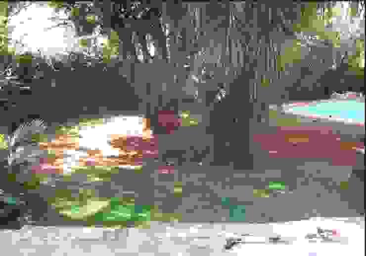 Garden revamp by Young Landscape Design Studio