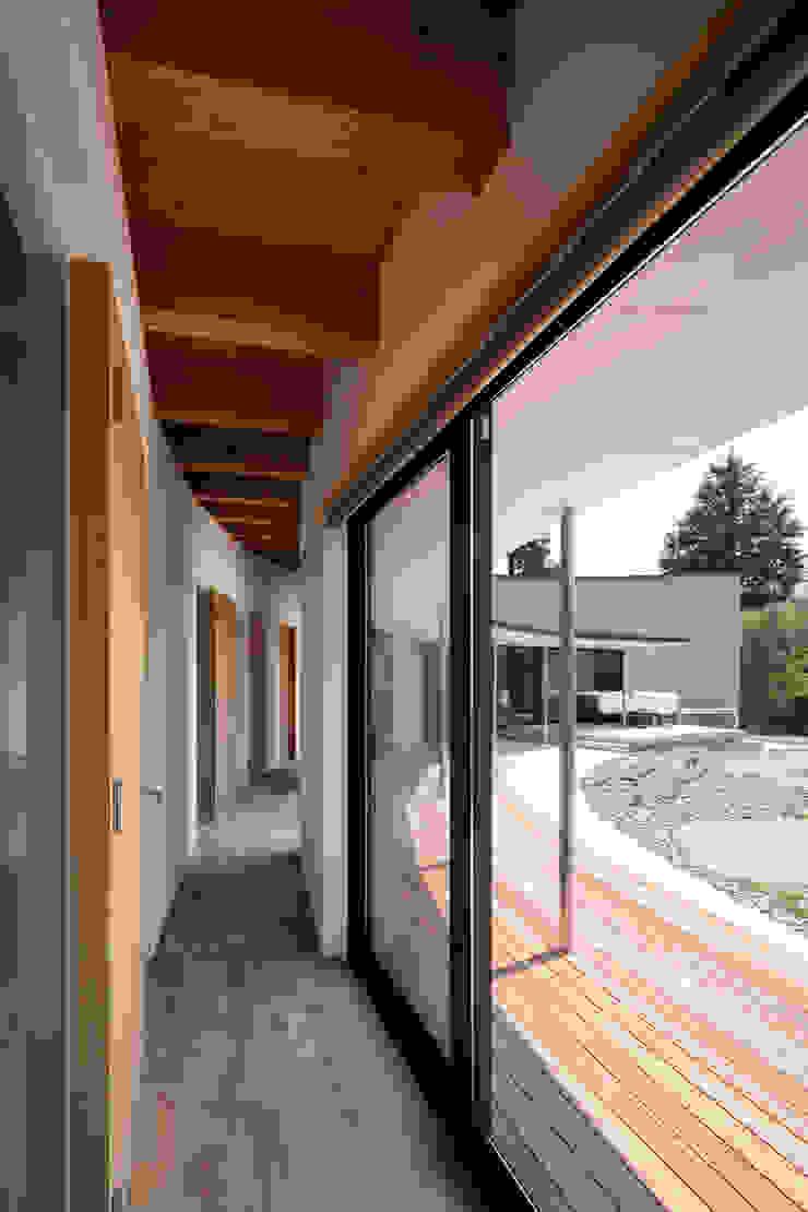 堺の家 モダンスタイルの 玄関&廊下&階段 の 井上久実設計室 モダン 木 木目調