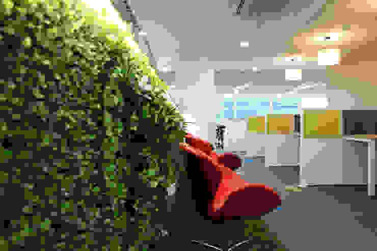 Apex Project Solutions Pvt. Ltd. Moderne Ladenflächen Plastik Grün