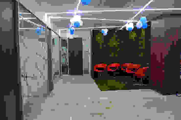 Apex Project Solutions Pvt. Ltd. Moderne Ladenflächen Plastik Holznachbildung