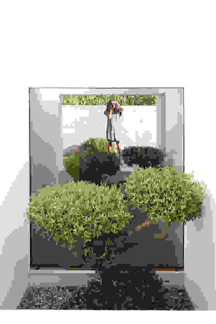Qiarq . arquitectura+design Casas unifamilares Vidrio Verde