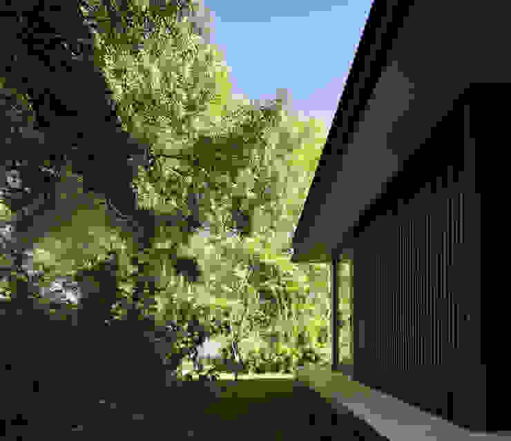 CTN HOUSE par Brengues Le Pavec architectes Minimaliste Métal