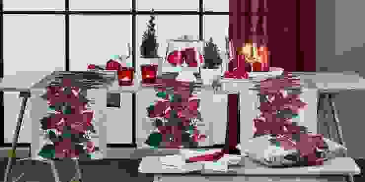 Alfred Apelt GmbH Ruang Keluarga Modern Red