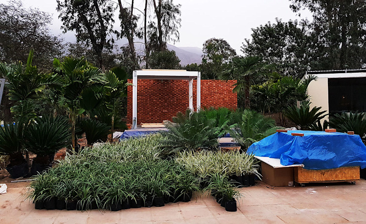 Marcia Lenz Paisajismo의  정원