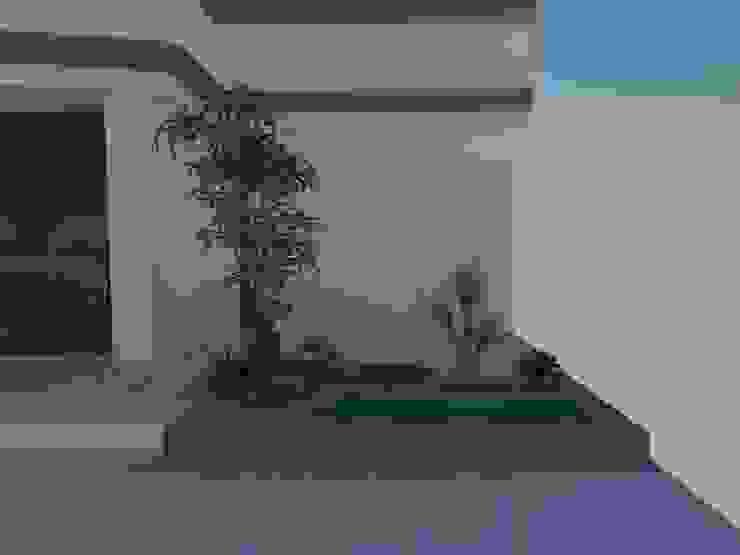 Desain taman Oleh Jasa tukang taman gresik Tropis Bambu Green