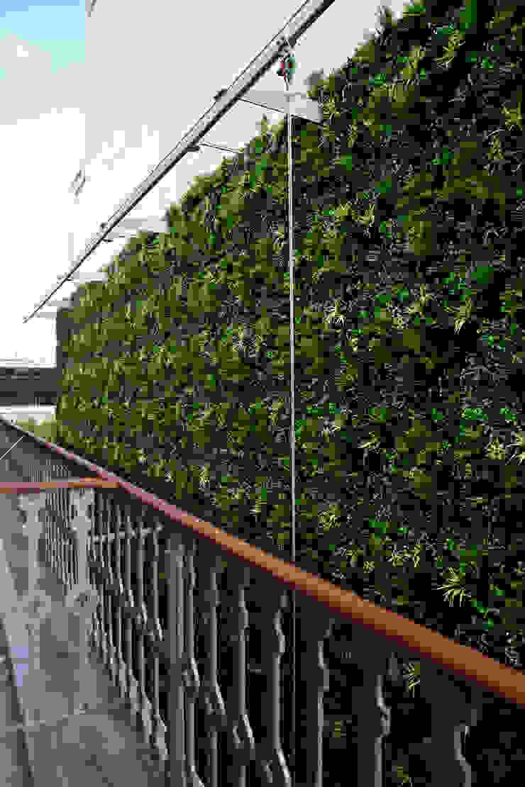 Wonder Wall - Jardins Verticais e Plantas Artificiais Halaman depan