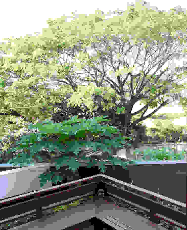 by AIGI Architect + Associates Asian Wood Wood effect